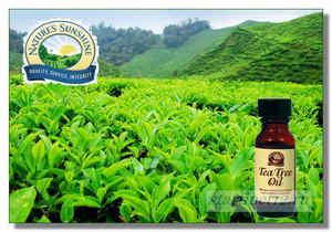Флакончик масла чайного дерева