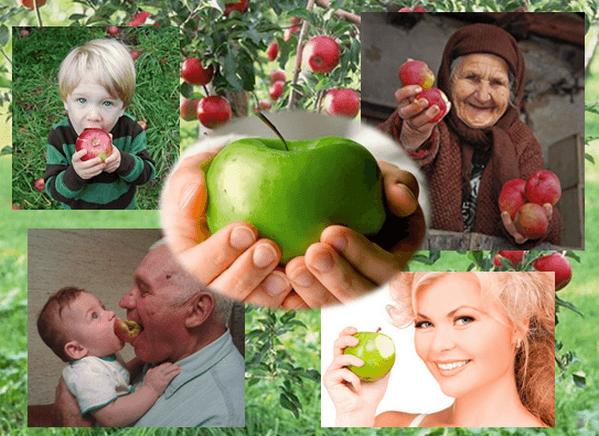 Яблоки полезны для людей всех возрастов