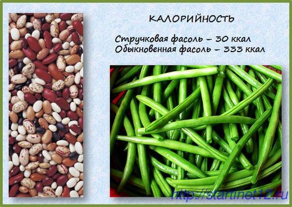 Блюда на второе из овощей простые рецепты с фото