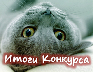 Итоги конкурса: Моя любимая кошка— лучший в мире лекарь