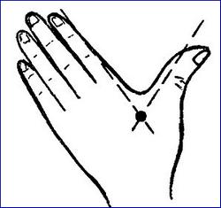 Массажная точка на руке