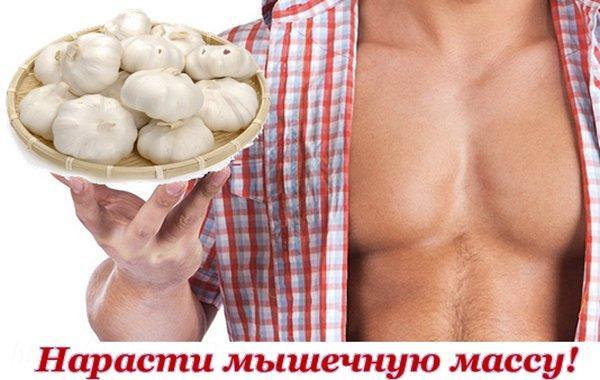Чеснок наращивает мышечную массу у мужчины