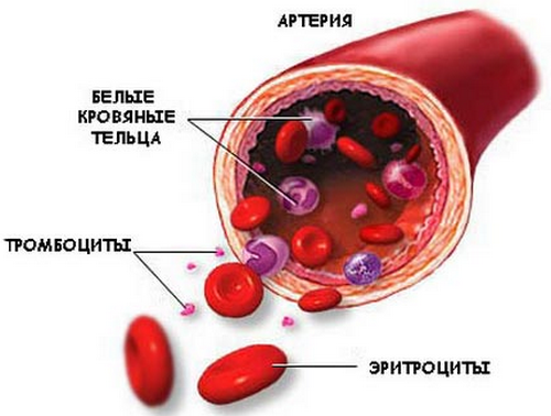 Препараты снижающие холестерин в желчи