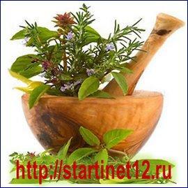 Лекарственные травы в народной медицине