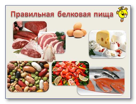 Натуральные белки пищи