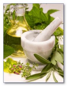 Народная медицина при варикозе - траволечение
