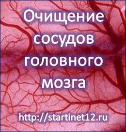 Очищение сосудов головного мозга. Улучшение памяти.