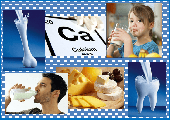 Содержание кальция в молочных продуктах