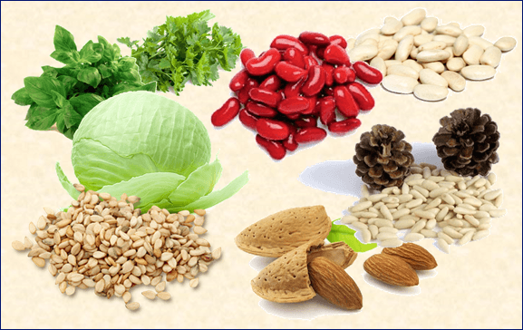 Содержание кальция в овощах, зелени и орехах