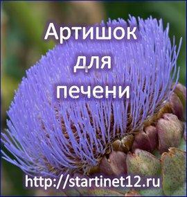 Арришок - лекарство для печени
