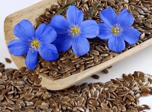 Льняные семена для похудения