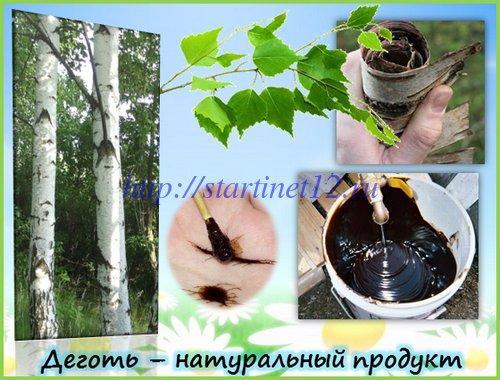 Деготь - натуральный продукт из бересты