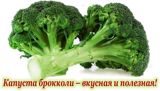 Капуста брокколи - вкусная и полезная