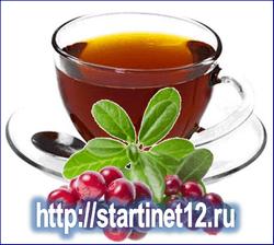 Листья брусники: Лечебные свойства и применение