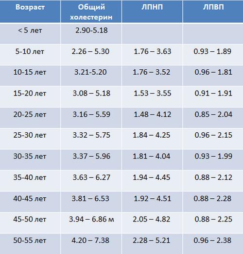 Таблица-холестерин1