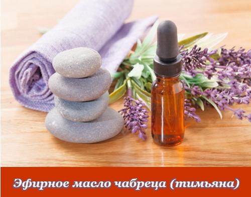 Эфирное масло чабреца: свойства и применение для красоты и здоровья