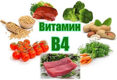 Витамин В4 в продуктах