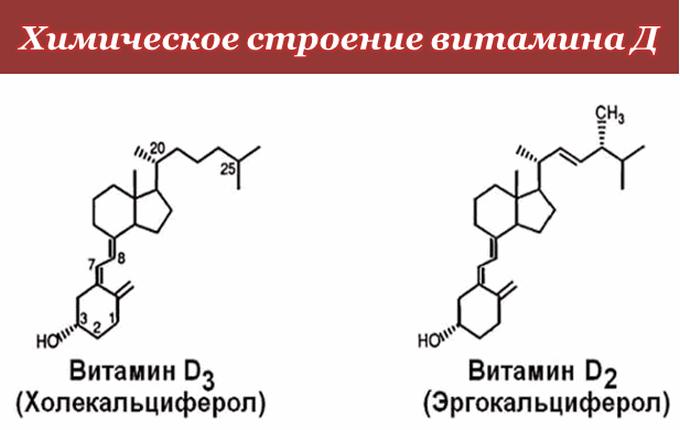 Химическое строение витамина Д